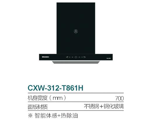 CXW-312-T861H
