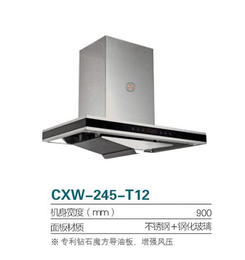 CXW-245-T12