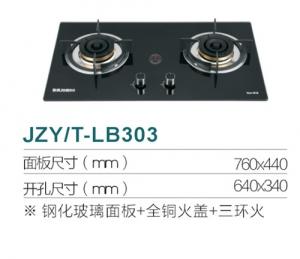 JZY/T-LB303