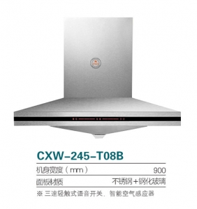 CXW-245-T08B