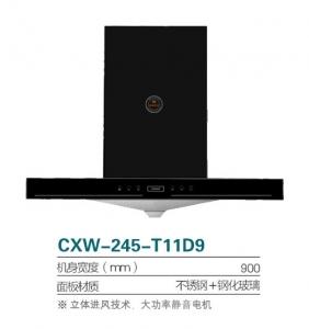 CXW-245-T11D9