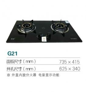 天津G21