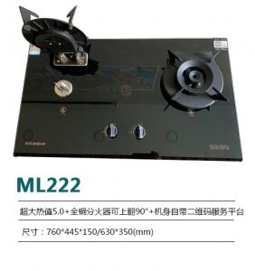 ML222
